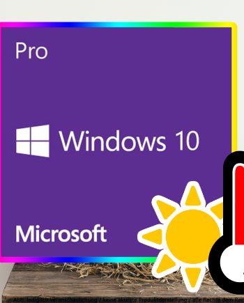 Windows 10 Pro Digital Download