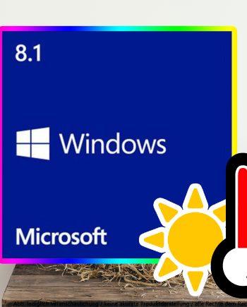 Windows 8.1 Professional Digital Download